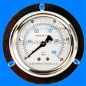 带边耐震压力表YN75ZQ/YN100ZQ/YN150量程,精度