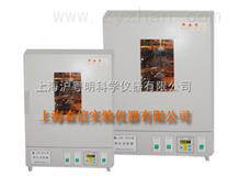 LSX-401恒溫老化試驗箱/不銹鋼恒溫老化箱