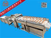 云南TS-1三七毛刷清洗機(根莖類藥材清洗設備)