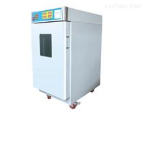 三強環氧乙烷滅菌器SQ-H