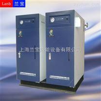 上海兰宝45kw全自动电加热蒸汽锅炉
