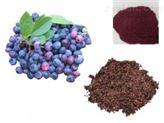 蓝莓速溶粉 蓝莓提取物10:1  包邮