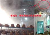 食用菌专用加湿器